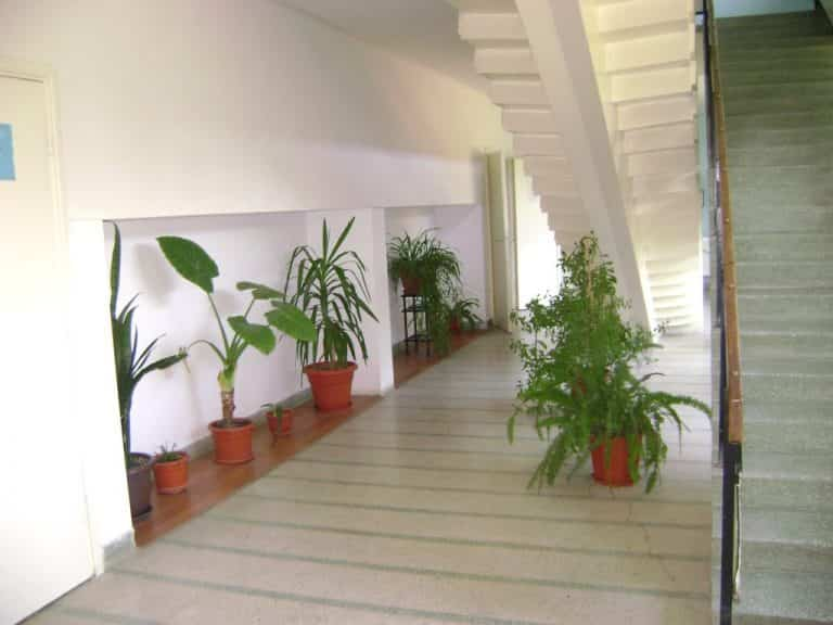 interior-hol-1024x768